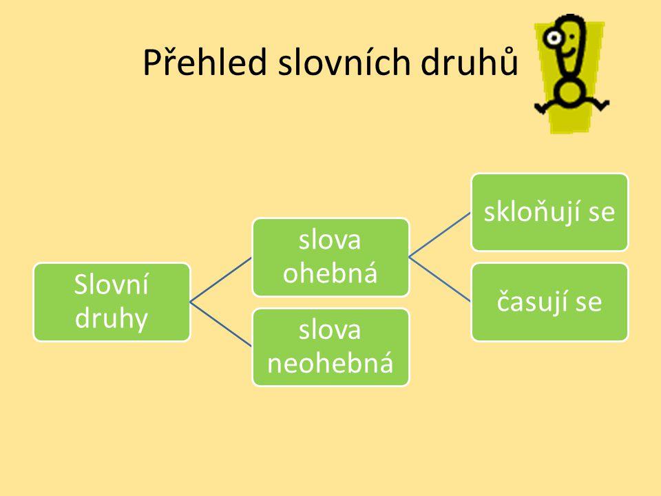 Přehled slovních druhů