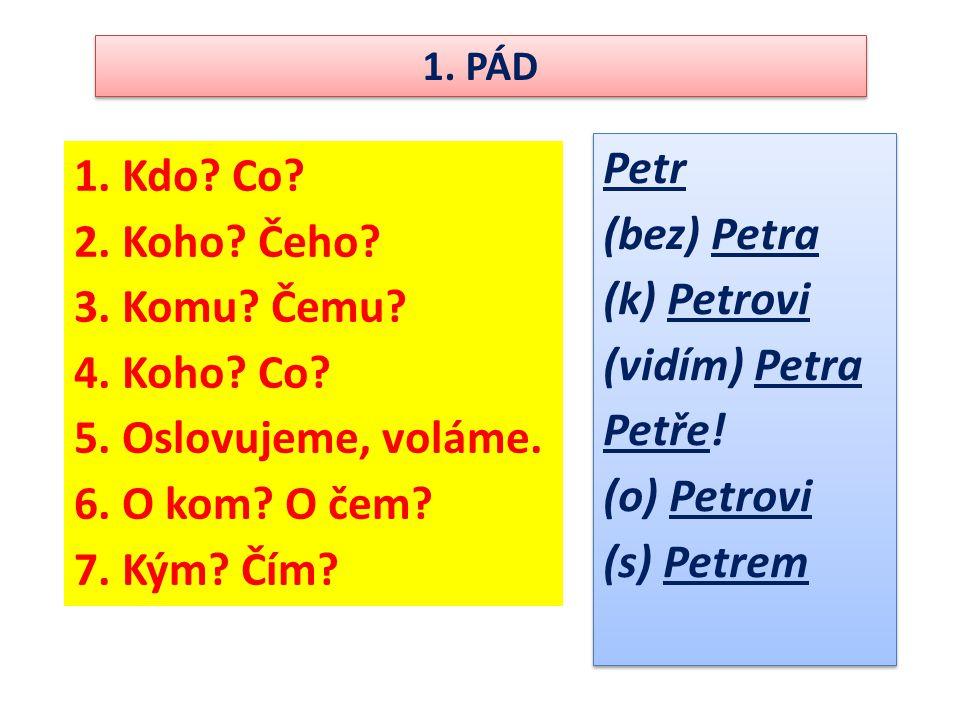 Petr Kdo Co (bez) Petra Koho Čeho (k) Petrovi Komu Čemu