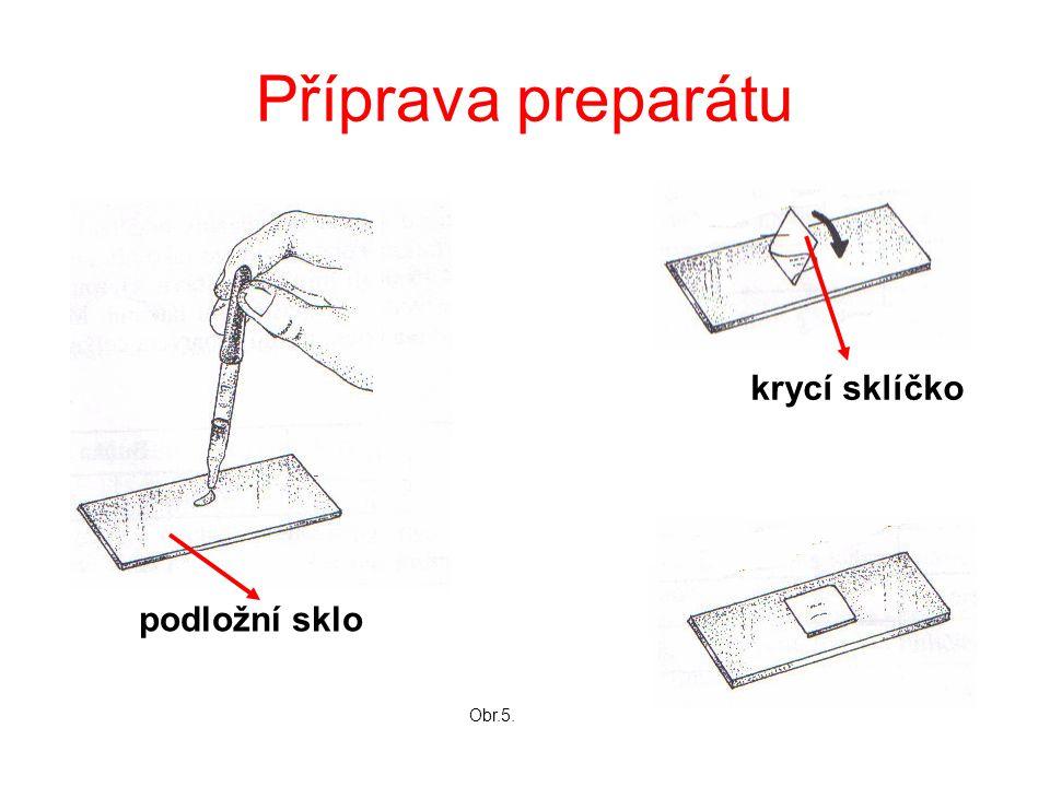 Příprava preparátu krycí sklíčko podložní sklo Obr.5.