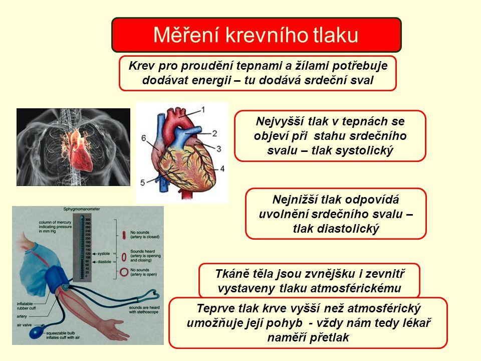 Nejnižší tlak odpovídá uvolnění srdečního svalu – tlak diastolický