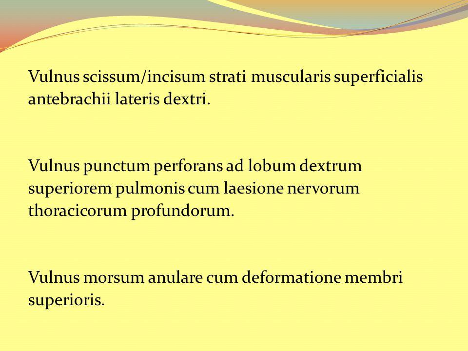 Vulnus scissum/incisum strati muscularis superficialis