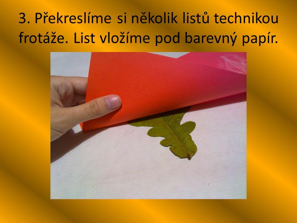 3. Překreslíme si několik listů technikou frotáže