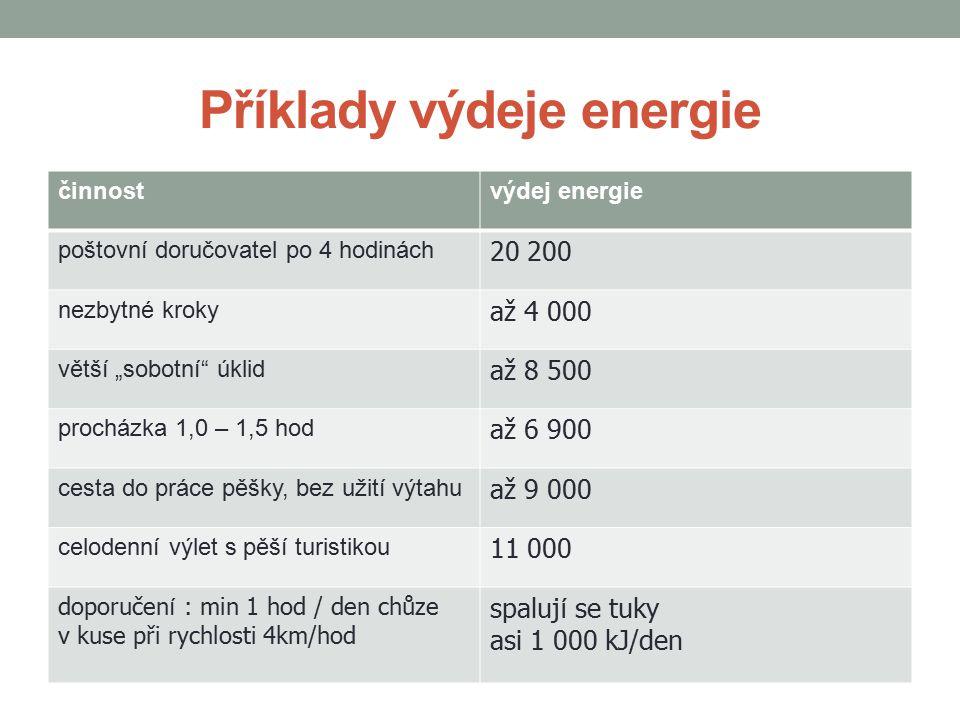 Příklady výdeje energie