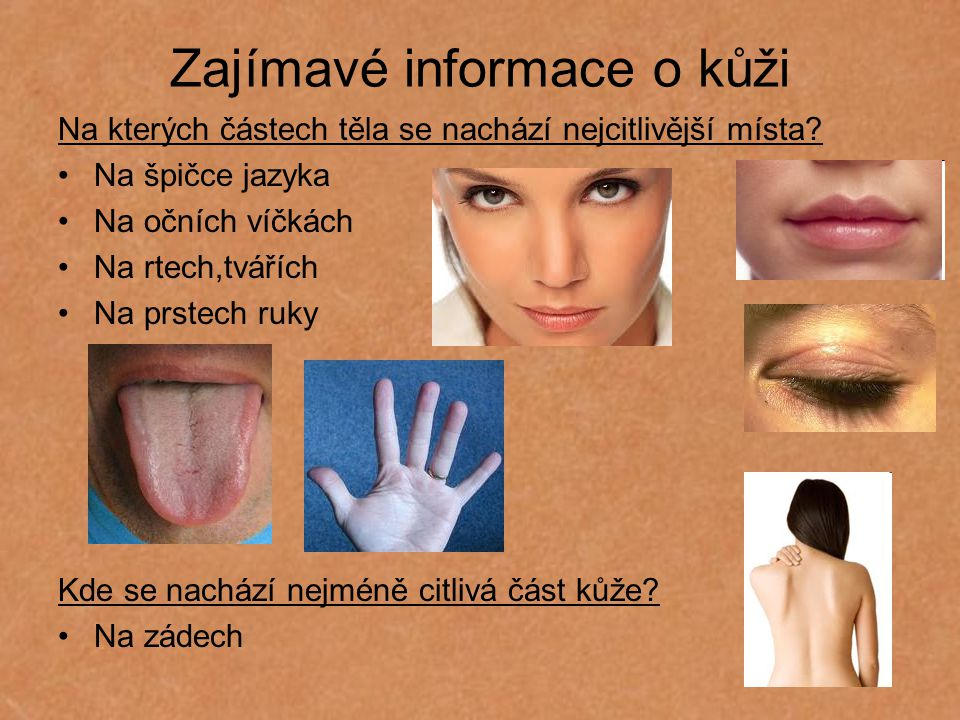 Zajímavé informace o kůži