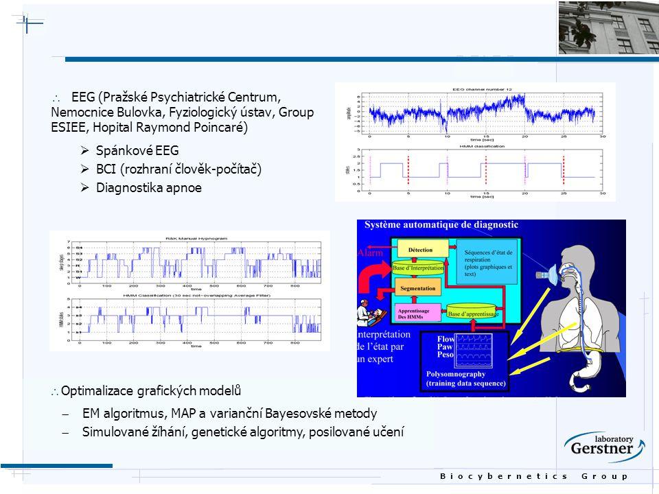 EEG (Pražské Psychiatrické Centrum, Nemocnice Bulovka, Fyziologický ústav, Group ESIEE, Hopital Raymond Poincaré)