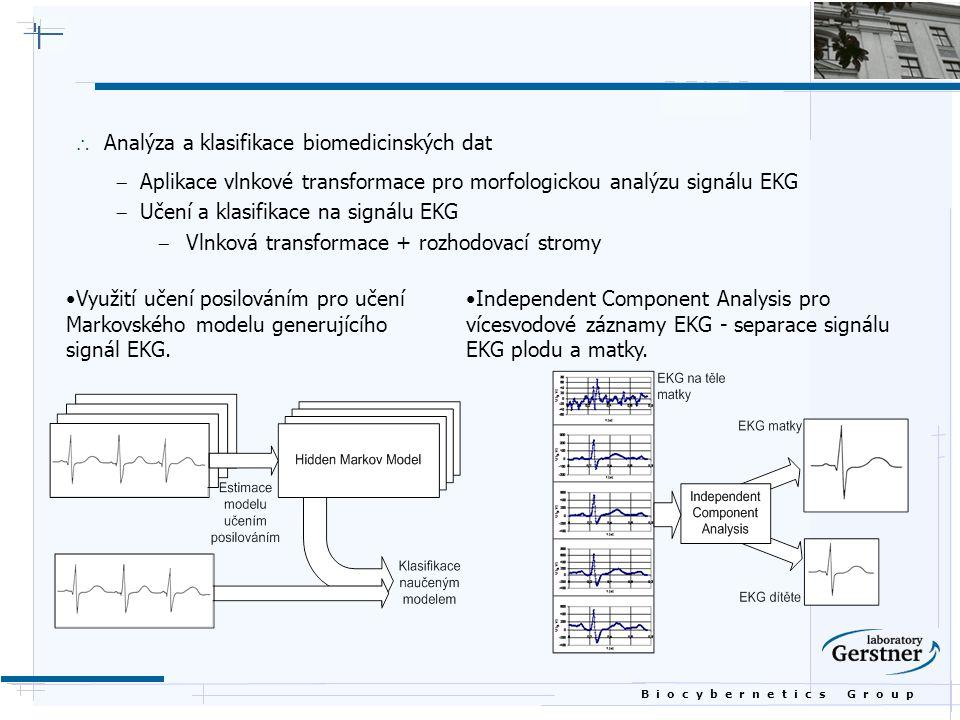 Analýza a klasifikace biomedicinských dat