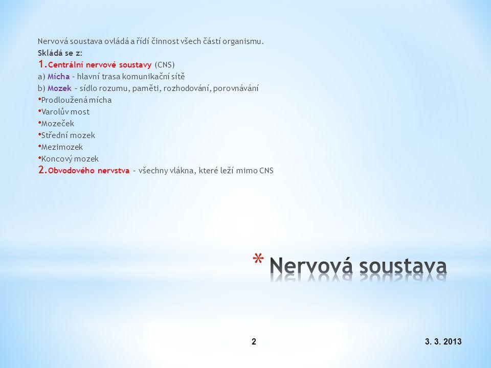 Nervová soustava ovládá a řídí činnost všech částí organismu.