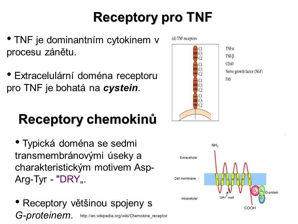 Receptory pro TNF Receptory chemokinů