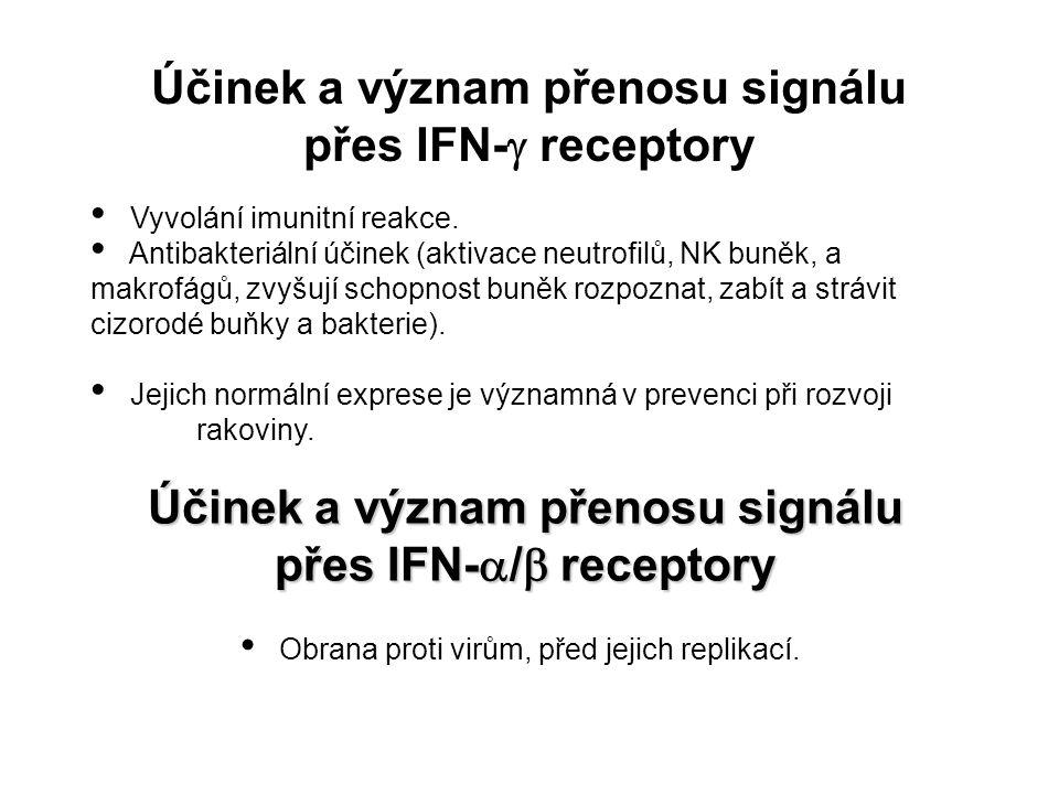 Účinek a význam přenosu signálu přes IFN-g receptory