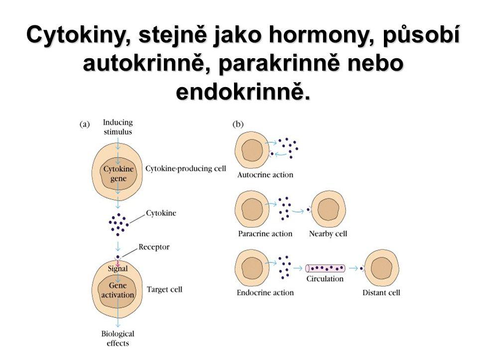 Cytokiny, stejně jako hormony, působí autokrinně, parakrinně nebo endokrinně.