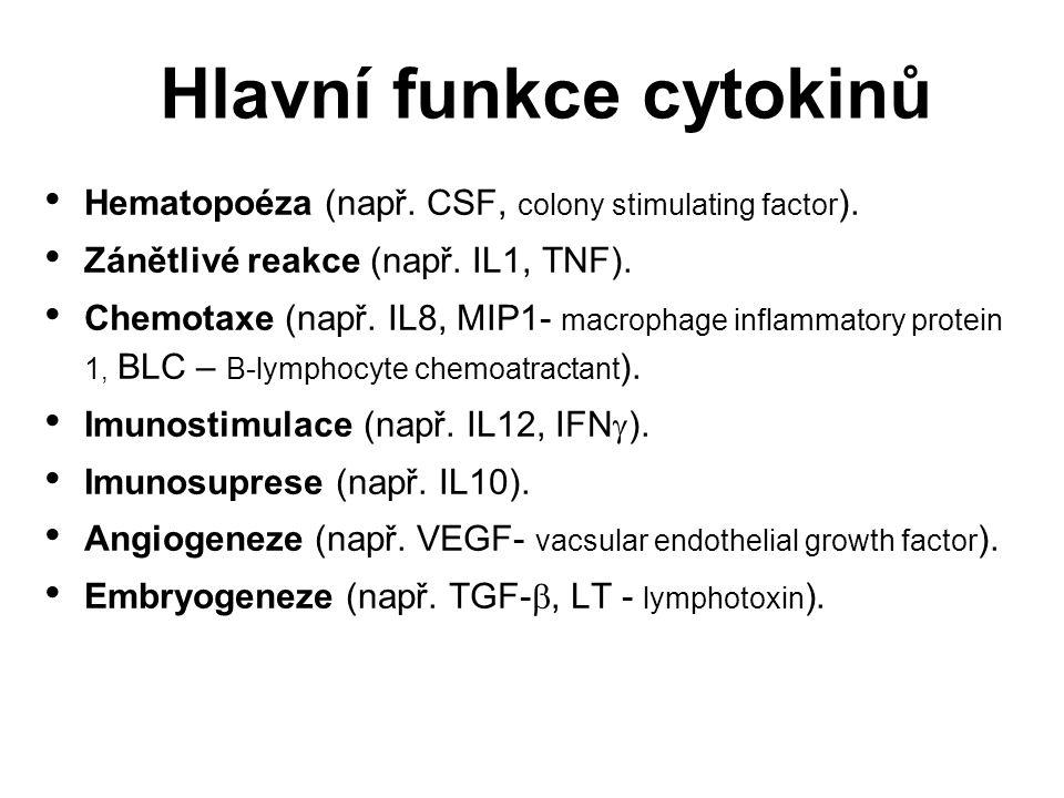 Hlavní funkce cytokinů