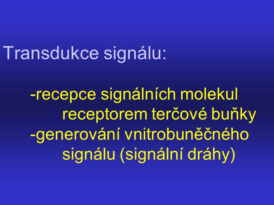 Transdukce signálu:. -recepce signálních molekul