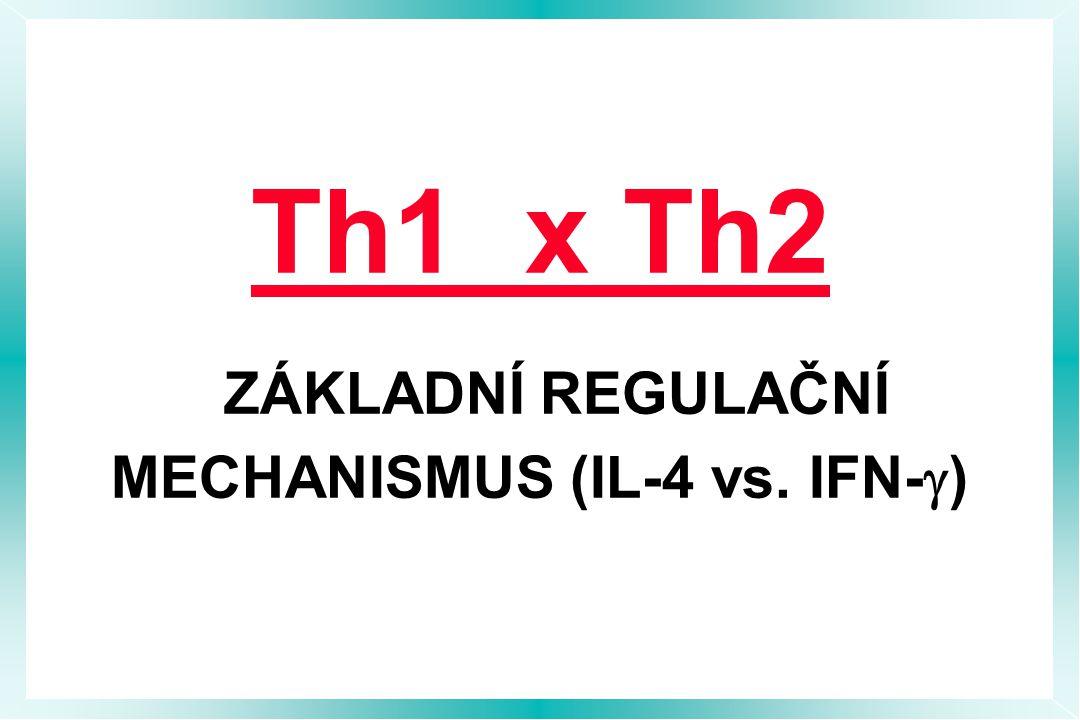 Th1 x Th2 ZÁKLADNÍ REGULAČNÍ MECHANISMUS (IL-4 vs. IFN-g)