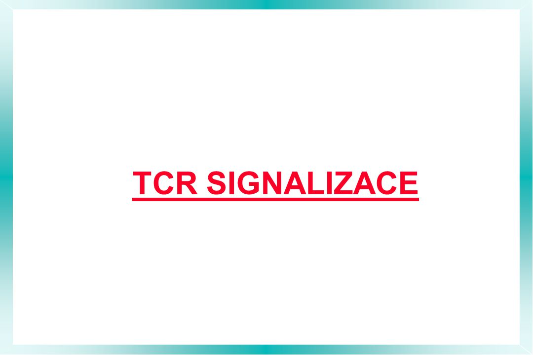 TCR SIGNALIZACE