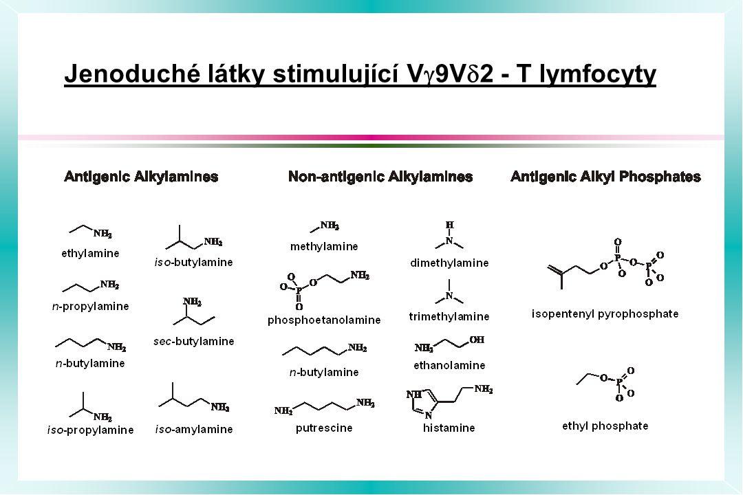 Jenoduché látky stimulující Vg9Vd2 - T lymfocyty