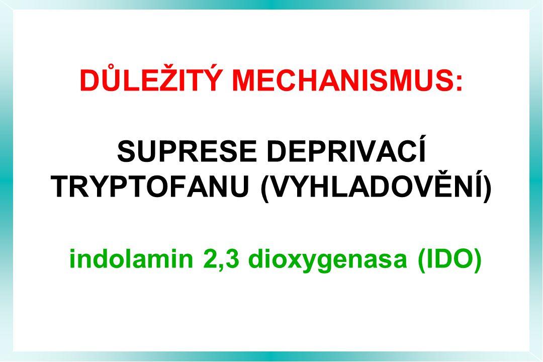 DŮLEŽITÝ MECHANISMUS: SUPRESE DEPRIVACÍ TRYPTOFANU (VYHLADOVĚNÍ) indolamin 2,3 dioxygenasa (IDO)