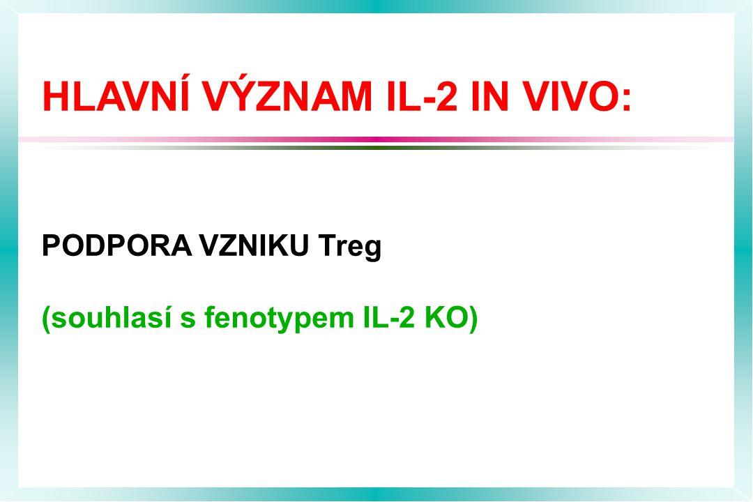 HLAVNÍ VÝZNAM IL-2 IN VIVO: