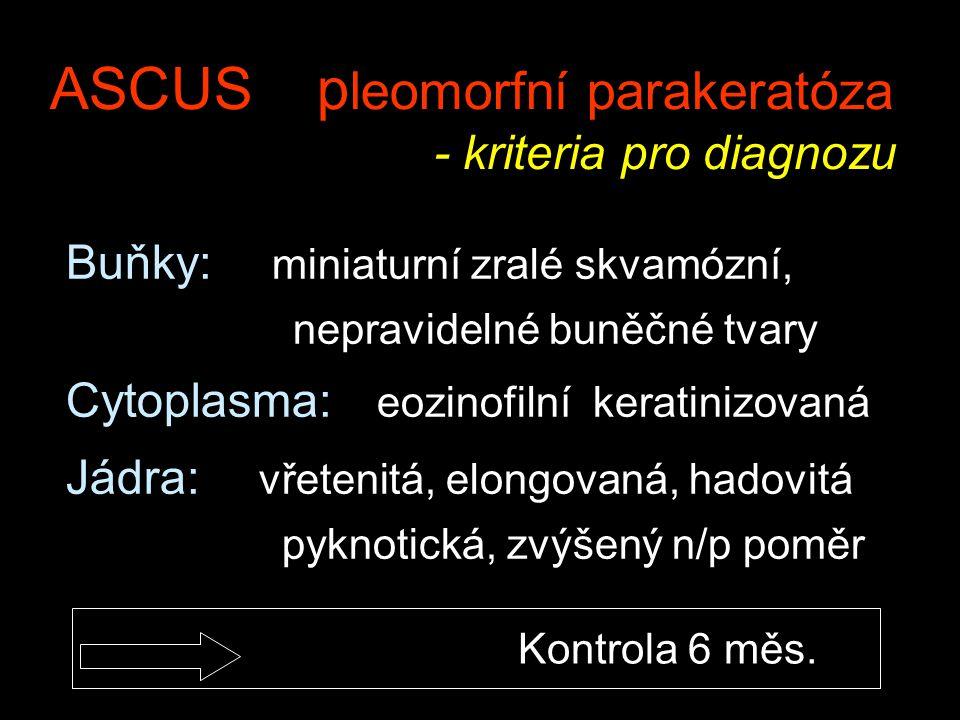 ASCUS pleomorfní parakeratóza - kriteria pro diagnozu