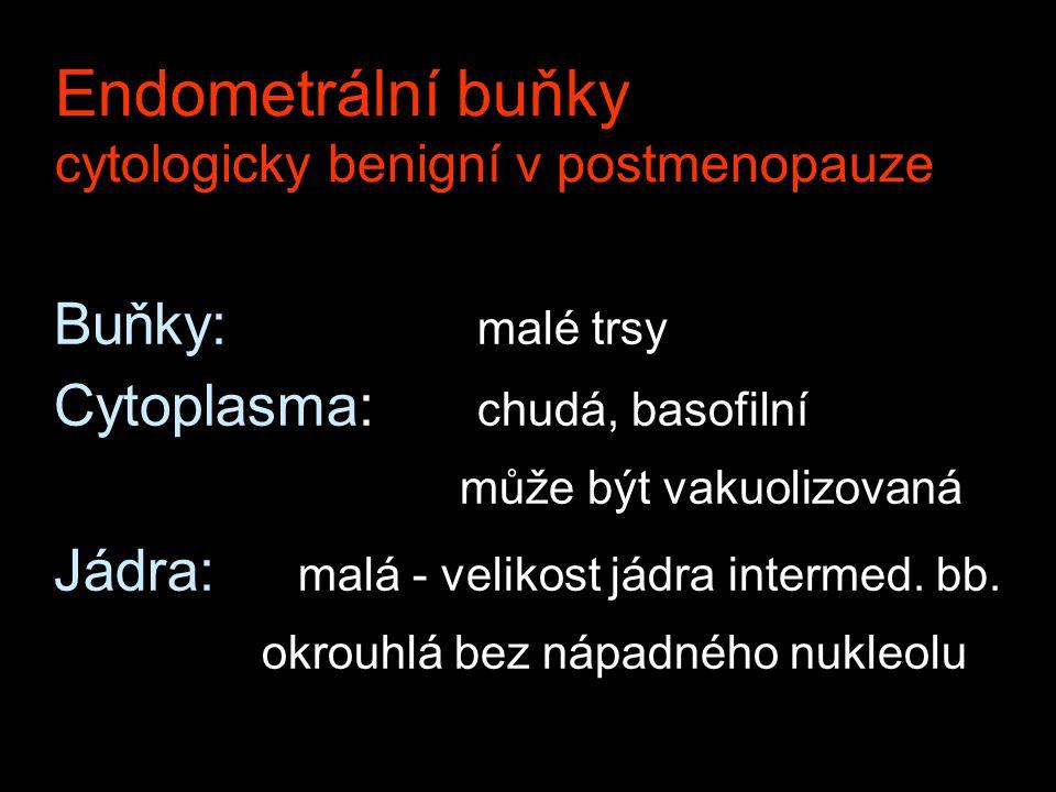 Endometrální buňky cytologicky benigní v postmenopauze