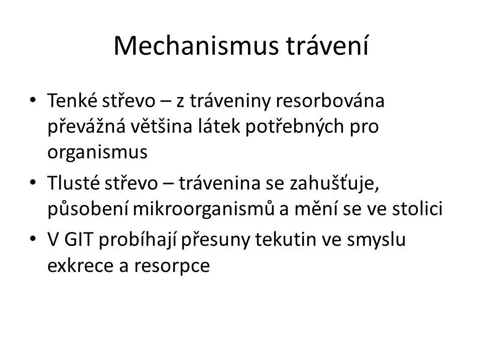 Mechanismus trávení Tenké střevo – z tráveniny resorbována převážná většina látek potřebných pro organismus.