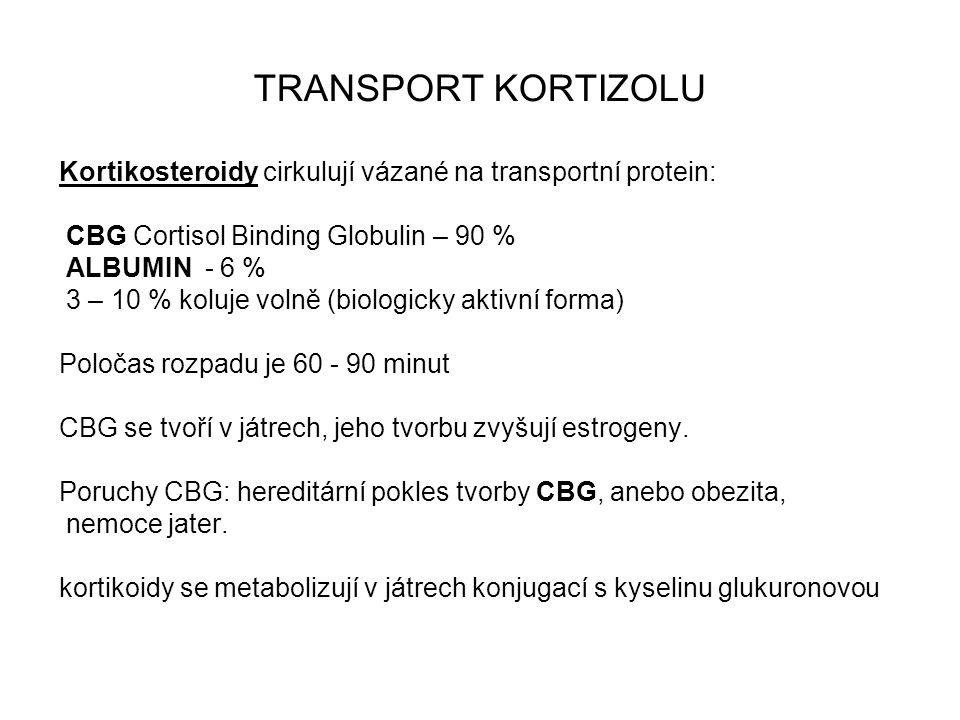 TRANSPORT KORTIZOLU Kortikosteroidy cirkulují vázané na transportní protein: CBG Cortisol Binding Globulin – 90 %