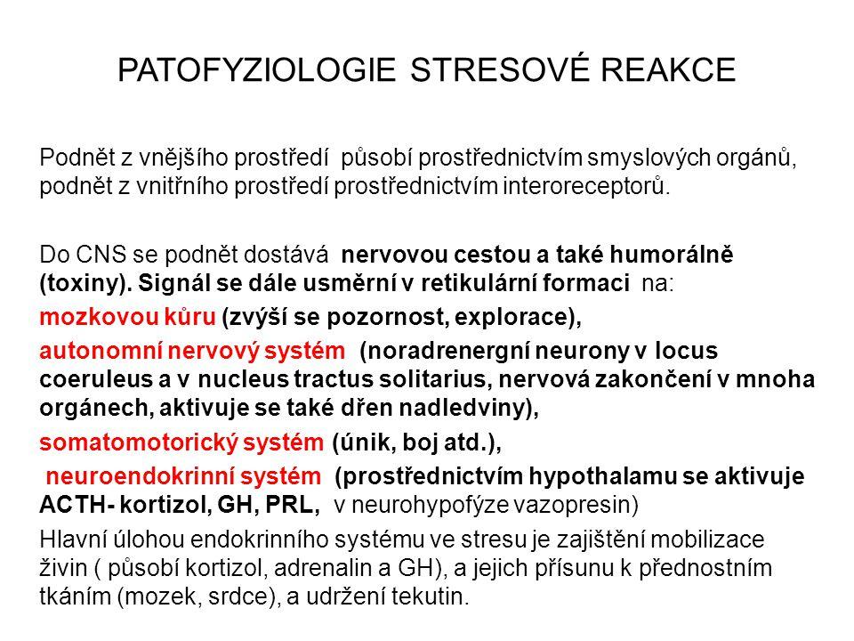 PATOFYZIOLOGIE STRESOVÉ REAKCE