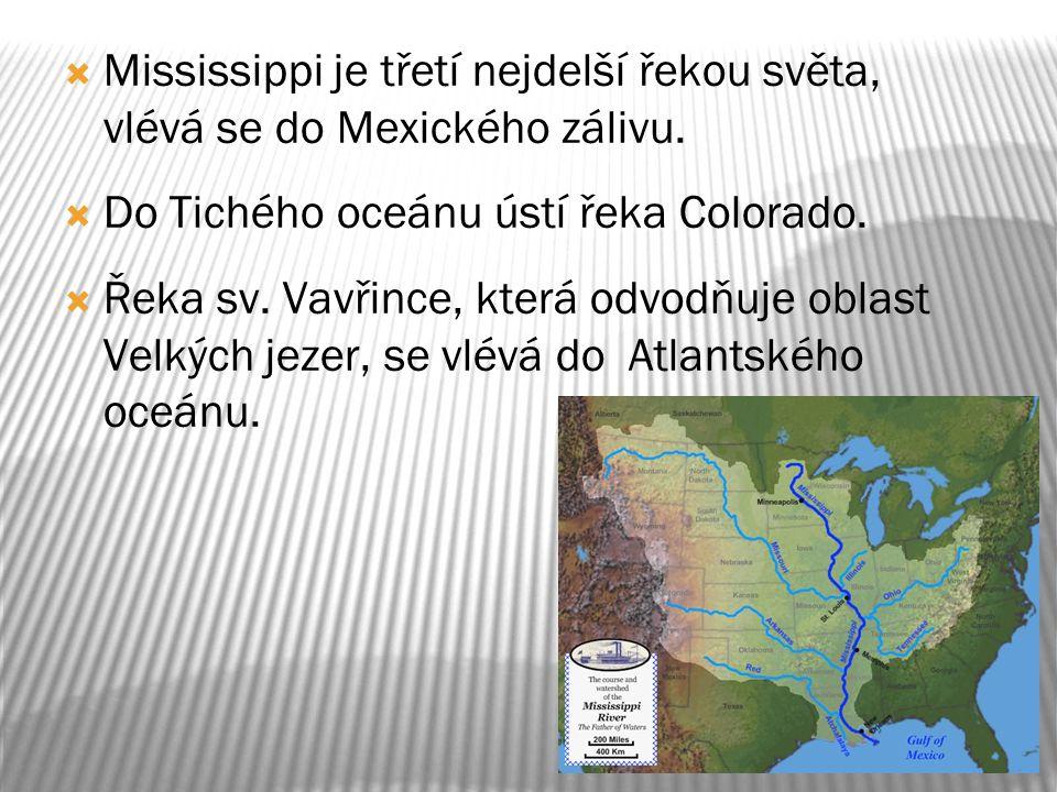 Mississippi je třetí nejdelší řekou světa, vlévá se do Mexického zálivu.
