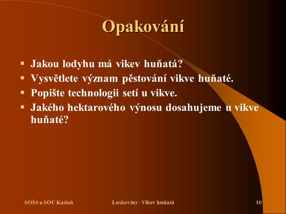 Luskoviny - Vikev huňatá
