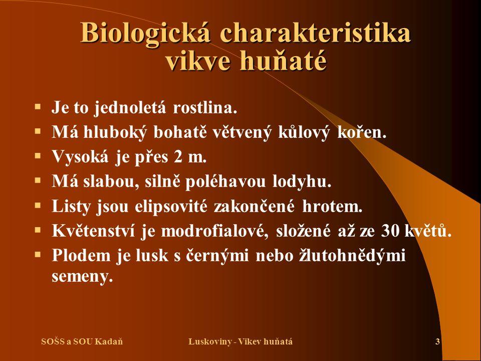 Biologická charakteristika vikve huňaté