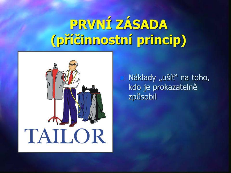 PRVNÍ ZÁSADA (příčinnostní princip)