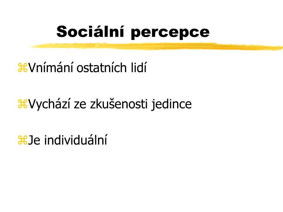 Sociální percepce Vnímání ostatních lidí Vychází ze zkušenosti jedince