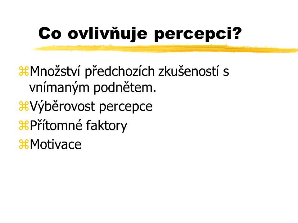 Co ovlivňuje percepci Množství předchozích zkušeností s vnímaným podnětem. Výběrovost percepce. Přítomné faktory.