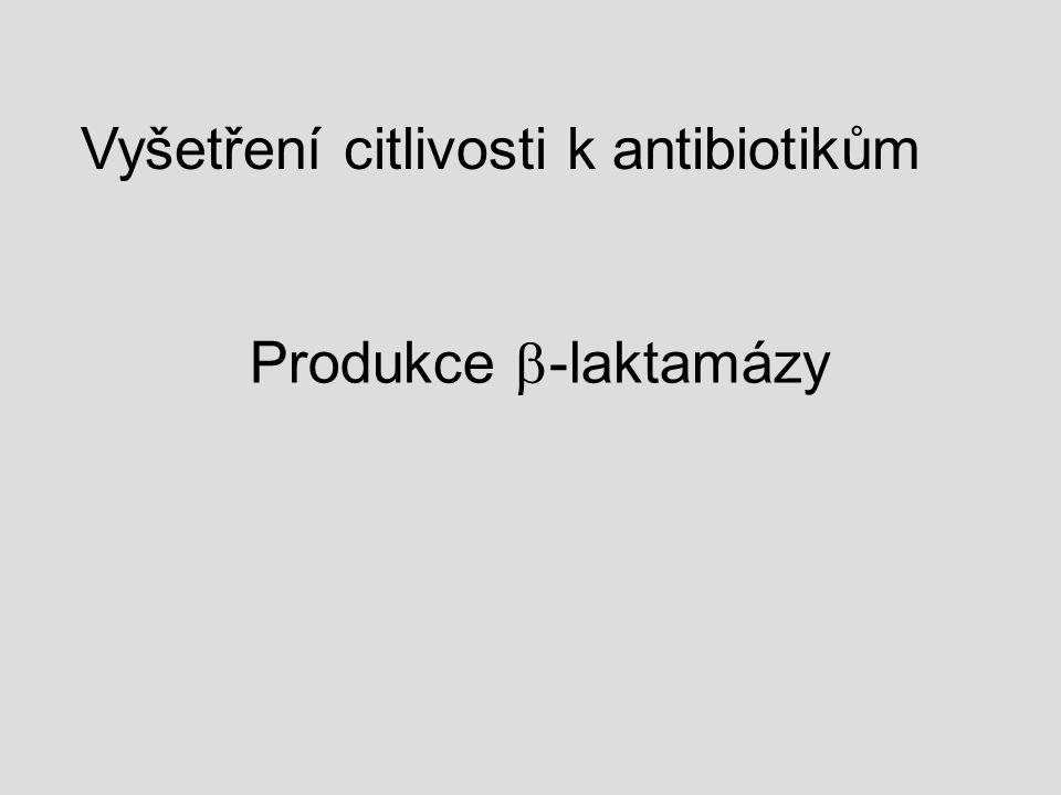 Vyšetření citlivosti k antibiotikům