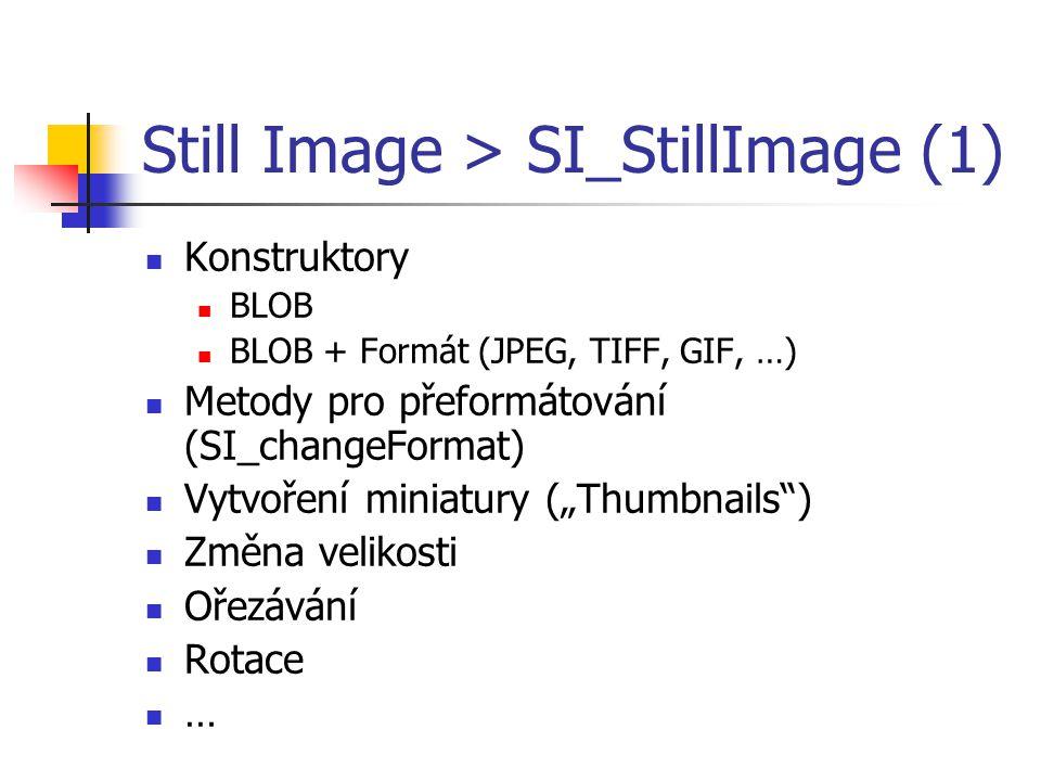 Still Image > SI_StillImage (1)