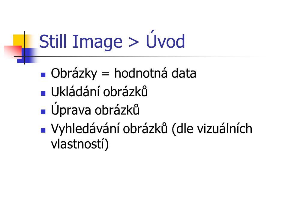 Still Image > Úvod Obrázky = hodnotná data Ukládání obrázků