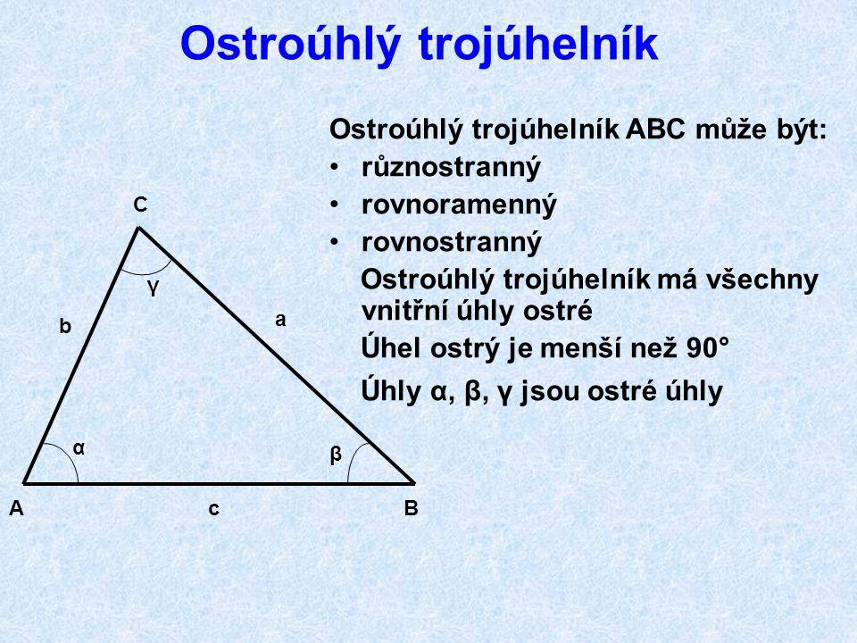 Ostroúhlý trojúhelník