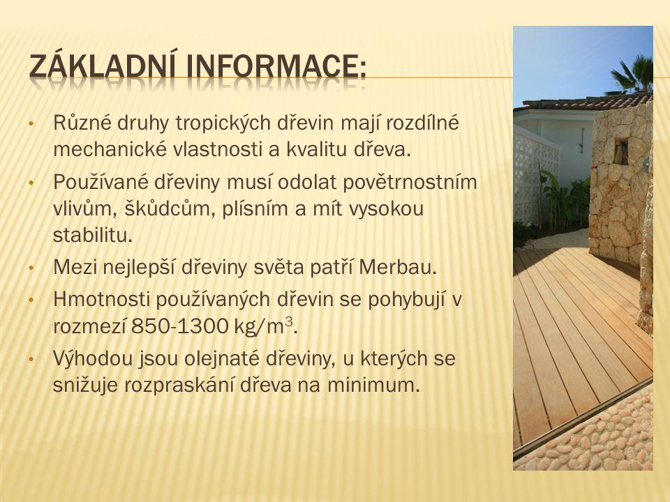 Základní informace: Různé druhy tropických dřevin mají rozdílné mechanické vlastnosti a kvalitu dřeva.