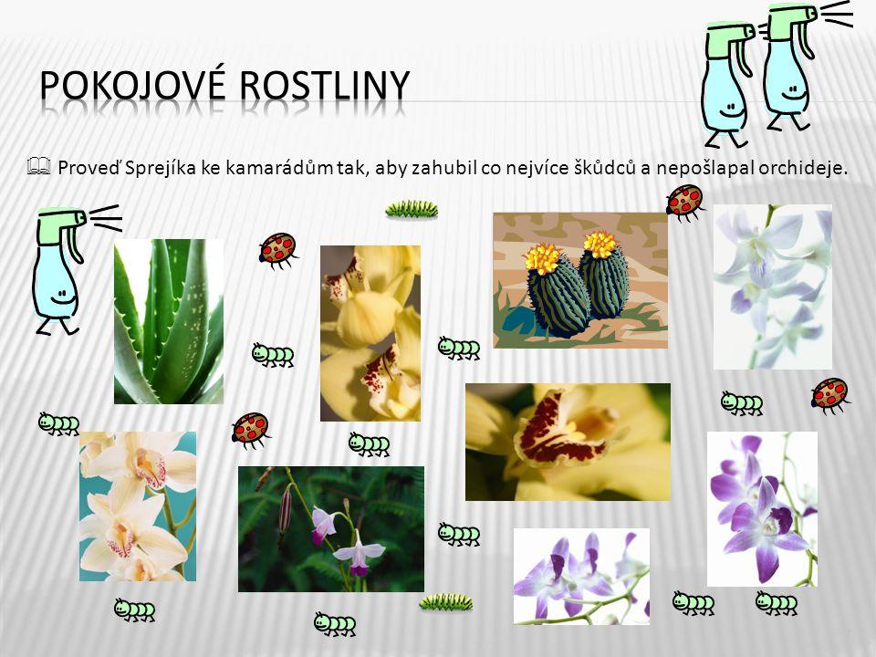 Pokojové rostliny  Proveď Sprejíka ke kamarádům tak, aby zahubil co nejvíce škůdců a nepošlapal orchideje.
