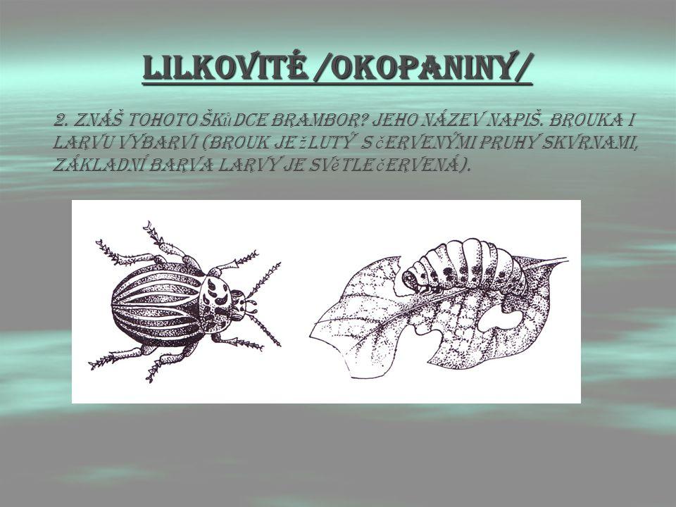 LIlkovitÉ /OKOPANINY/