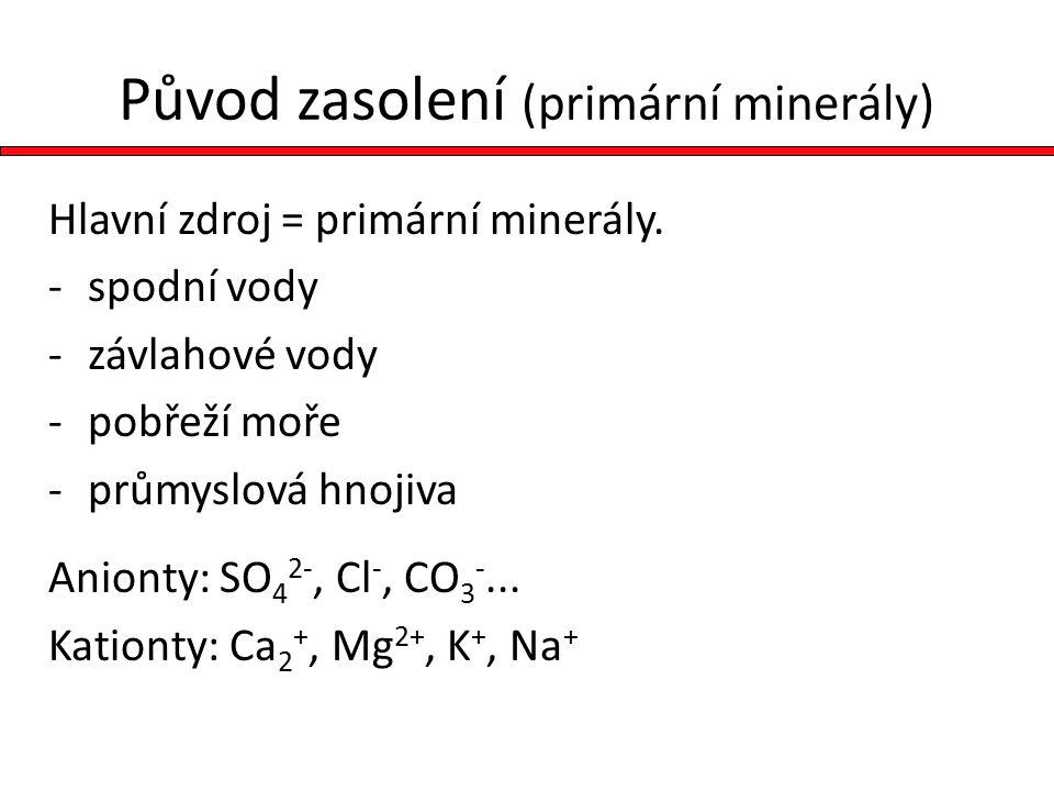 Původ zasolení (primární minerály)