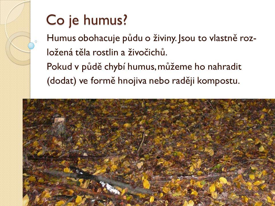 Co je humus Humus obohacuje půdu o živiny. Jsou to vlastně roz-