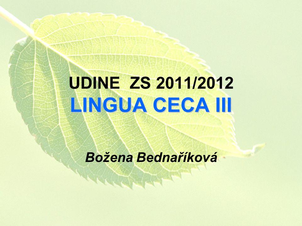 UDINE ZS 2011/2012 LINGUA CECA III