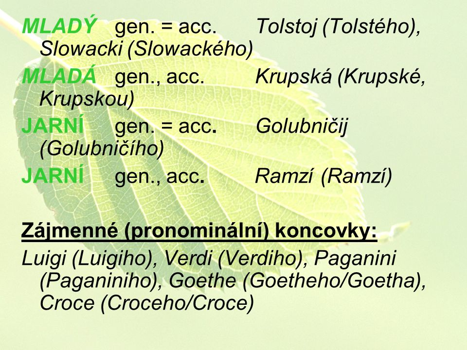 MLADÝ gen. = acc. Tolstoj (Tolstého), Slowacki (Slowackého)
