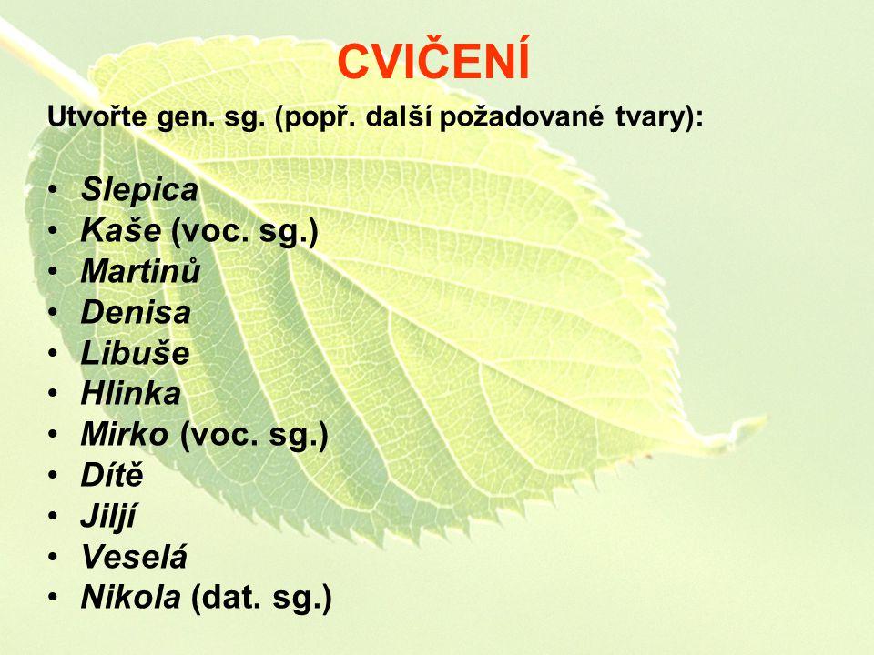 CVIČENÍ Slepica Kaše (voc. sg.) Martinů Denisa Libuše Hlinka