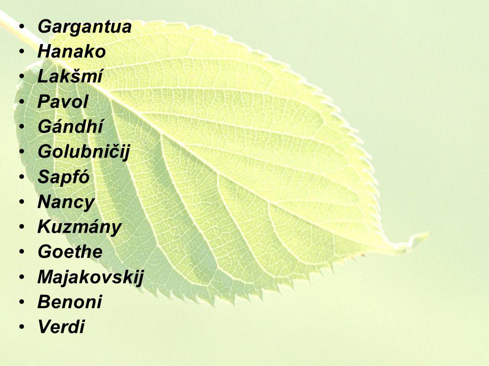 Gargantua Hanako Lakšmí Pavol Gándhí Golubničij Sapfó Nancy Kuzmány Goethe Majakovskij Benoni Verdi