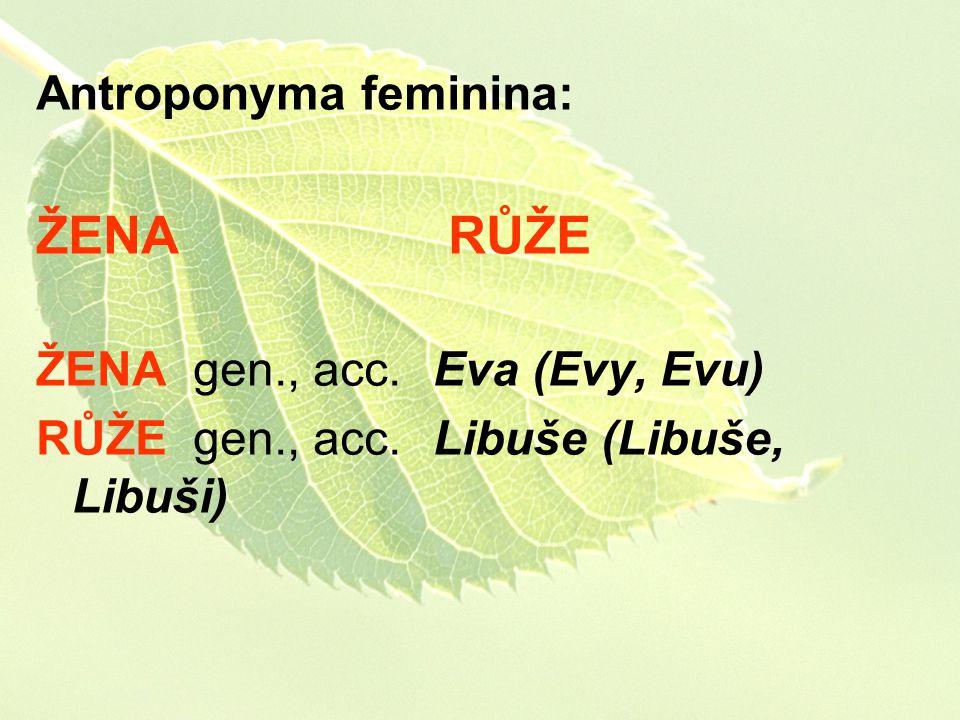 ŽENA RŮŽE Antroponyma feminina: ŽENA gen., acc. Eva (Evy, Evu)