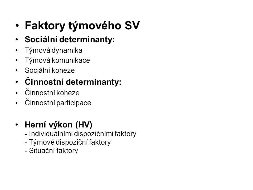 Faktory týmového SV Sociální determinanty: Činnostní determinanty: