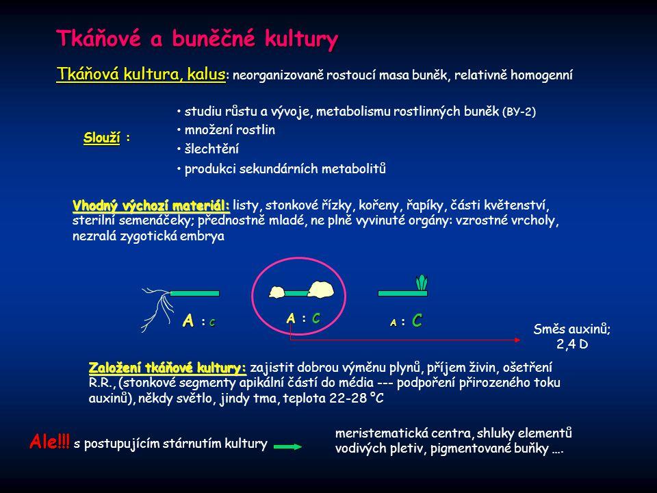 Tkáňové a buněčné kultury