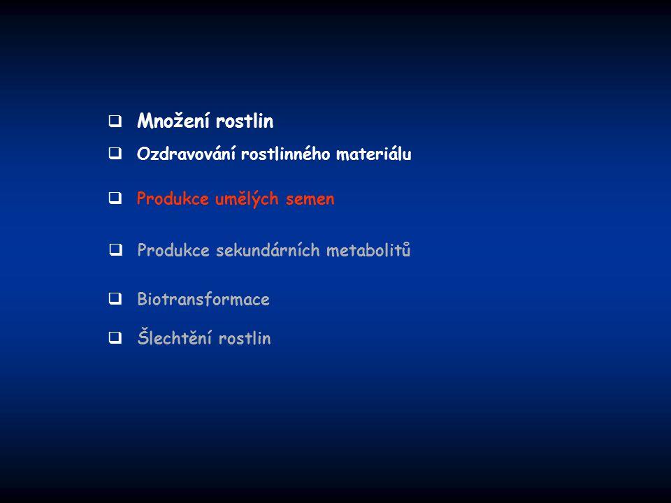 Množení rostlin Ozdravování rostlinného materiálu. Produkce umělých semen. Produkce sekundárních metabolitů.