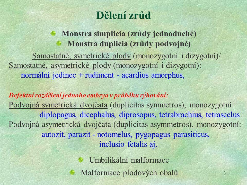 Dělení zrůd Monstra simplicia (zrůdy jednoduché)